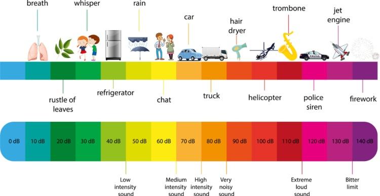 Decibel Scale Infographic