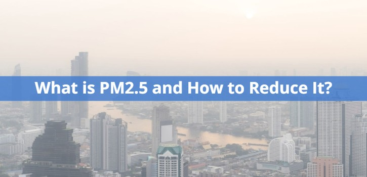 What is PM2.5 and How to Reduce It