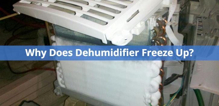 Dehumidifier Freeze Up